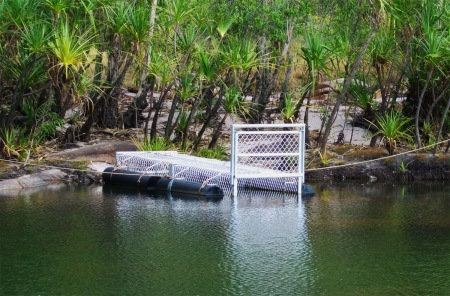 crocodile trap